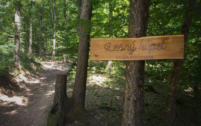 Unikátny projekt ekoturizmu – LESNÝ KÚPEĽ pribudne v lesoch Vinianskeho jazera