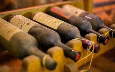 Po stopách kráľa vín