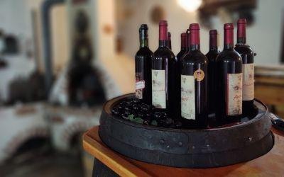 Milovníci vína sa stretnú na podujatí Chateau WINE festival